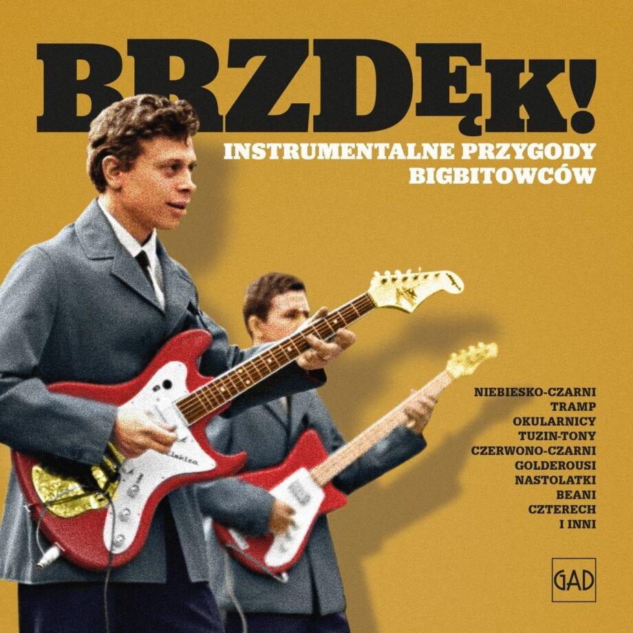 VA - Brzdęk! Instrumentalne przygody bigbitowców (CD)